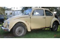 WANTED CLASSIC VW BEETLE PROJECT OR PARTS contact 07763119188