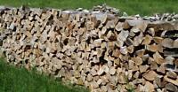 100 % Hard Maple Mixed Firewood