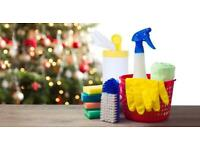 Deluxe Cleaning ONLY 12£ Christmas Cleaning book now