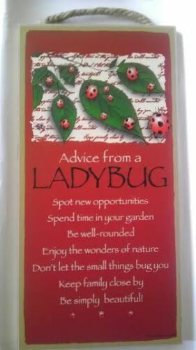 "5"" x 10"" ADVICE FROM A LADYBUG WOOD PLAQUE Inspirational Sign Novelty Gift"