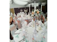 Elegance Wedding Decorations Service & Event Planning