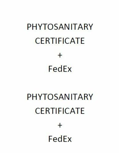Phytosanitary certificate + FedEx shipping