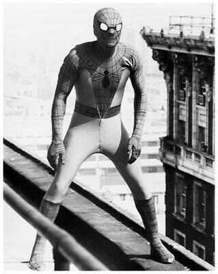 THE AMAZING SPIDER-MAN great 8x10 still from '70s tv series -- d208 Amazing Spider Man Tv Series