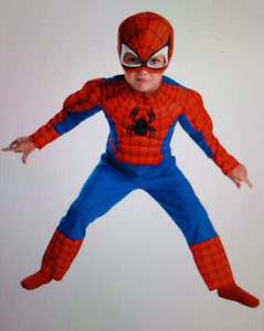 Spider-man Costume Wanted