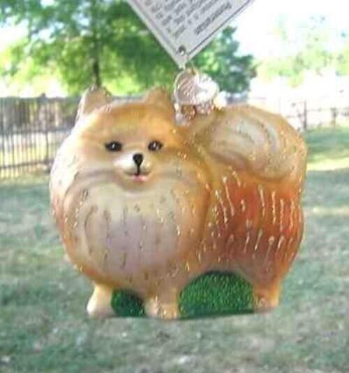 Old World Christmas POMERANIAN Standing Blown Glass Dog Breed Ornament