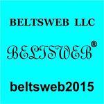 BELTSWEB  LLC