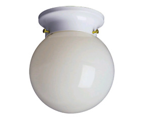 Flush Mount Globe Lights/Ceiling Lights