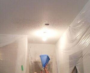 Textured Ceiling Application & Drywall Finishing