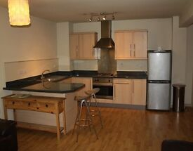 2 bedroom flat, short walking distance from city centre, fully furnished