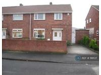 3 bedroom house in Dr Anderson Avenue, Doncaster, DN7 (3 bed)