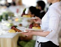 Hospitality Professional Available for Private Events