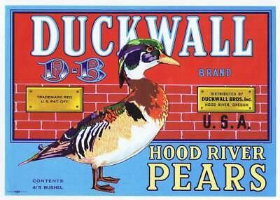 Duckwall, original oregon pear crate label, duck WHOLESALE LOT 25 LABELS