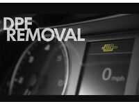 DPF Removal. EGR Removal. Remapping