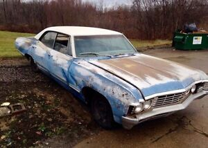 LOOKING FOR A '67 IMPALA OR CAPRICE PROJECT