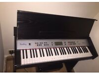 Built in keyboard/ small piano with pedal