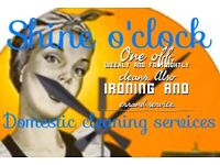 Shine o'clock domestic cleaning and errand services.