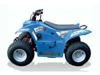 Quadzilla Buzz 50. Kids Quad