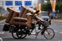 Professional Movers - Always on Time - Quality Service!