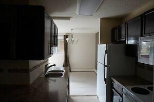cetury park LRT appartment for rent $1295