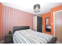 Stunning 1 bed flat available to rent
