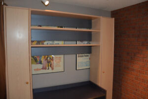 Neoset Wall Unit Shelving and Desk