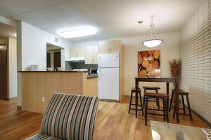 1 bed apt on Pembina Hwy available in June. Close to U of M