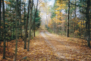 Rent to own. 6 acres wooded land at Arden. 50 yards from lake.