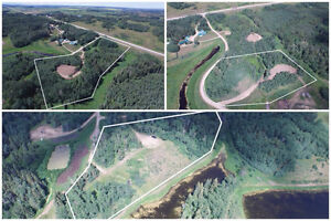 Acreage lots - RIMBEY East