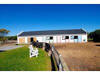 Original Equestrian Property for sale in stunning area of Cape Town