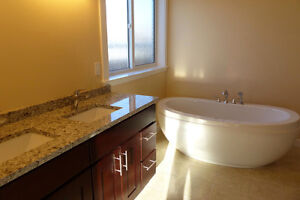 RENO & NEW CONSTRUCTION SPECIALISTS!!! Downtown-West End Greater Vancouver Area image 3