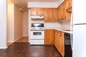 2 Bedrooms in Downtown - Perfect location- available for June