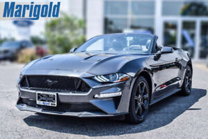 2018 Ford Mustang GT Premium Convertible     Brand New