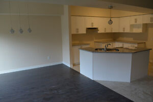 *Brand New*  Be The First to Live in This Gorgeous Home! London Ontario image 6