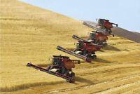 2015 Harvest Season - Combine operators and Truck drivers needed