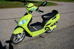 Ecoped electric scooter for sale