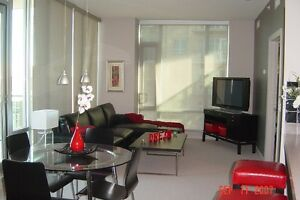 Downtown Fully furnished 2 Bed, 2 Bath Condo at Sasso building