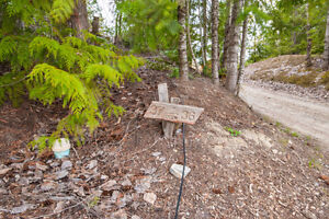 2477 Waverly Drive, Blind Bay- 36 acre lake view lot Revelstoke British Columbia image 4