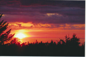 16 Acres with Gorgeous Bay of Fundy View
