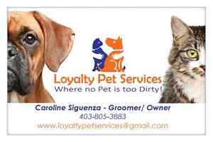 Pet grooming in Airdrie and Calgary area