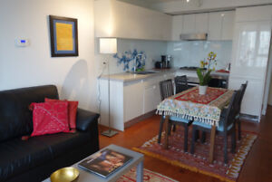 Spectacular, tastefully-furnished 17th floor Chinatown condo