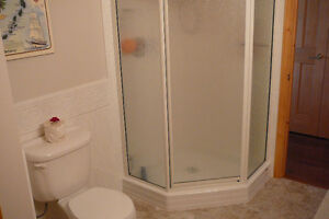 Neo Angle Shower Stall ( base not included )