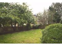 Modern Double Room in a Picturesque Area of St Johns Wood