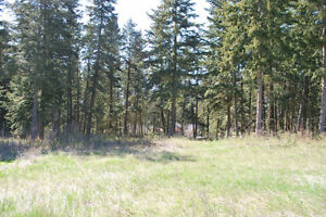 0.60 Acre Lots in Peaceful Location with Lovely Views