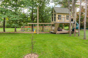 ONE TIME FALL CLEANUP OF FRONT AND BACKYARDS London Ontario image 5