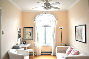 BEAUTIFUL 3 1/2 RENOVATED on the Plateau for ONE tenant