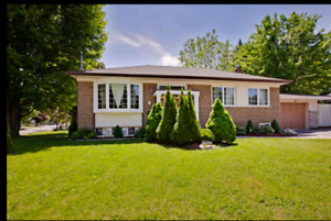 Spacious Bright Lower Floor in Newmarket (Don't Miss)