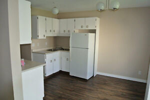 Large Newly Renovated Townhouse in Town of Redwater Edmonton Edmonton Area image 1