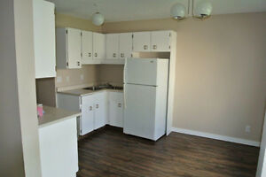 Large Newly Renovated Townhouse in Town of Redwater
