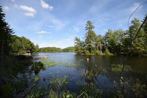Haliburton Real Estate Team-68 Acres on West Lake-$195,000 Kawartha Lakes Peterborough Area image 3