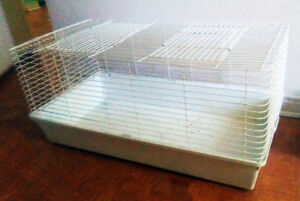 Rabbit cage ($70) and 1 Dog/cat cage ($40) and carrier ($30)